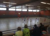 Handballturnier 2014 in Neustadt a.Rbge._11